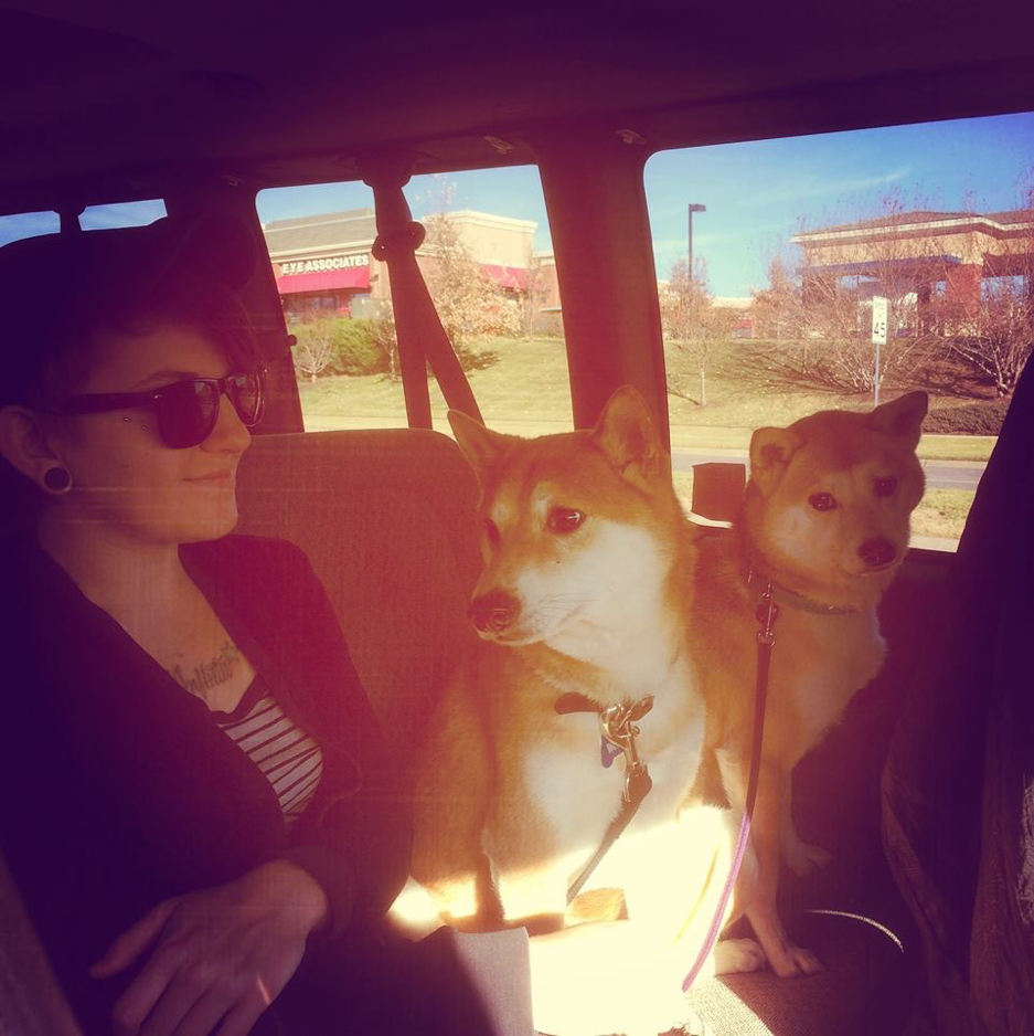 Back of the van with Mister and Luna